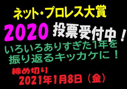 NPWA2020ko1.jpg